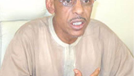 NEF spokesman